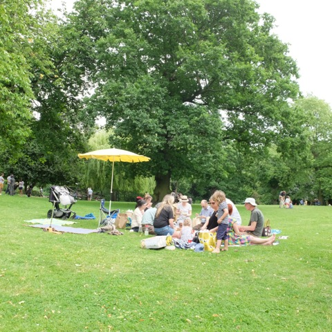 10th June 2018 | Macro Picnic in the park